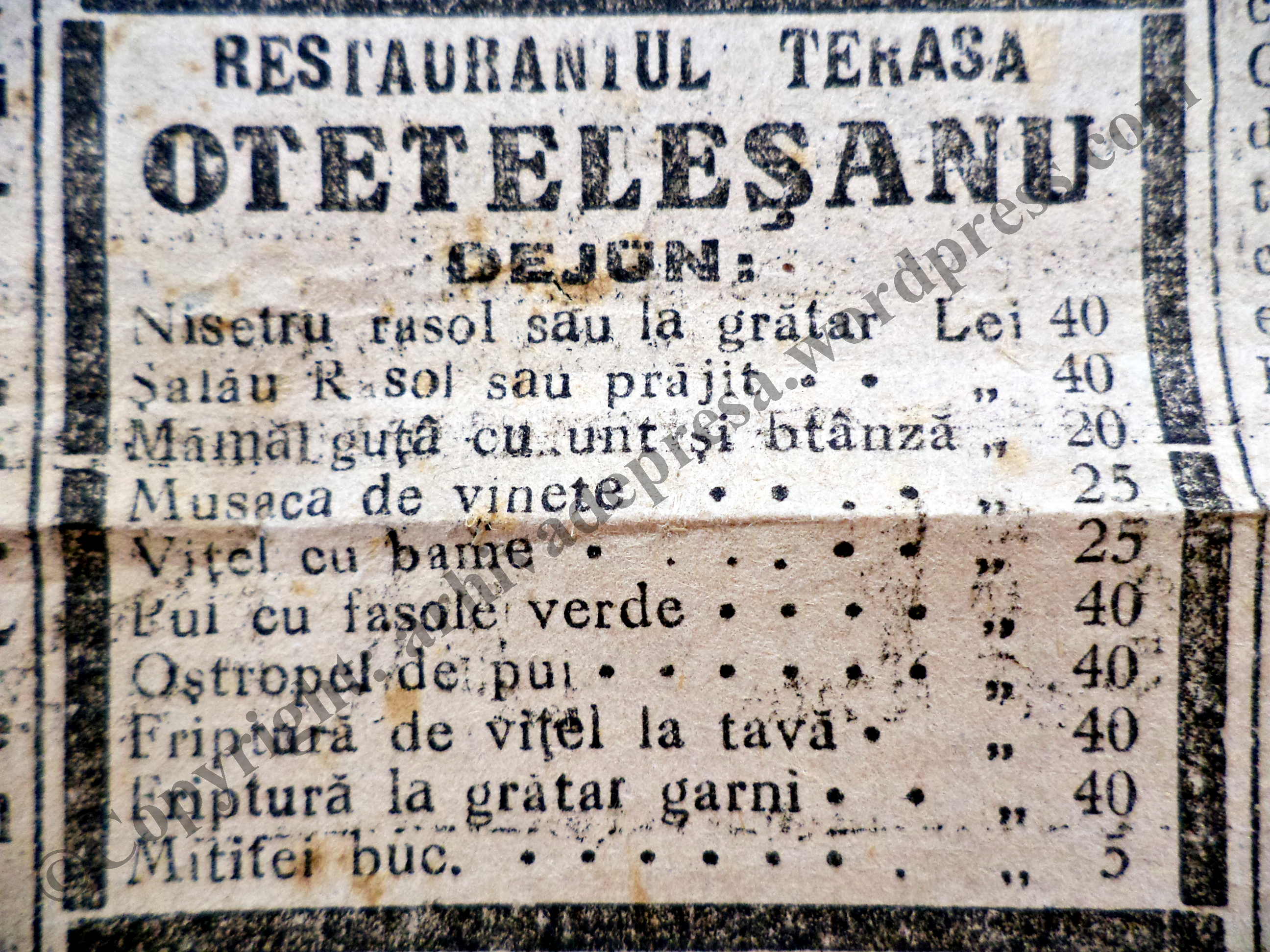 Istoria Terasei si a Restaurantului Otetelesanu